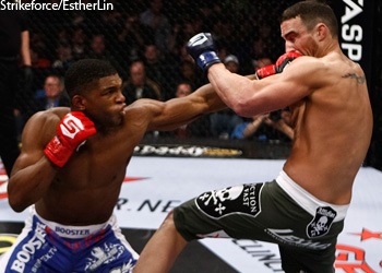 UFC Strikeforce Paul Daley