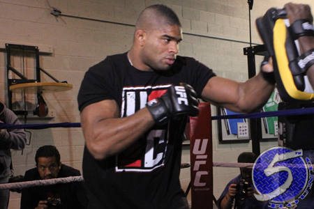 Alistair Overeem UFC Strikeforce