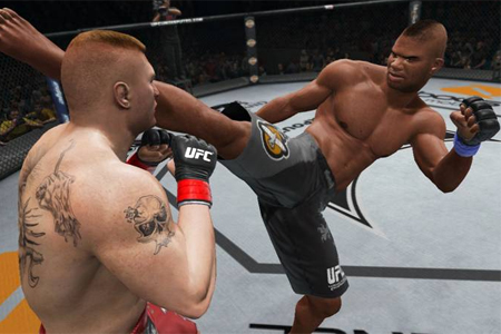 THQ Alistair  Overeem UFC
