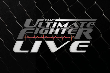 The Poster Ultimate Fighter Poster