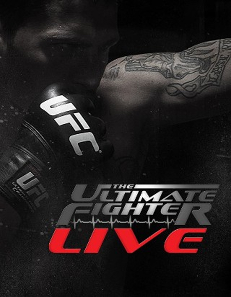 The Poster Ultimate Fighter Poster FX UFC