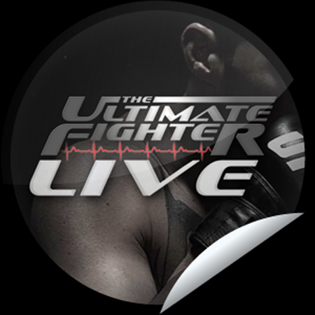 The Poster Ultimate Fighter Poster UFC
