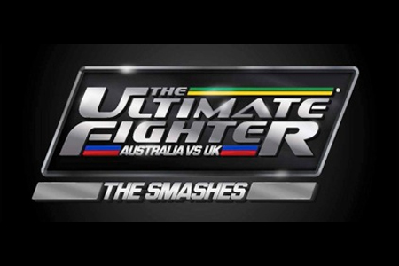 The Ultimate Poster Fighter The Smashes